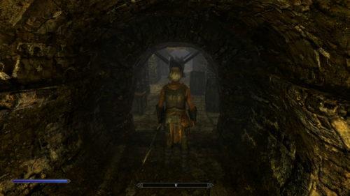 さらに地下へと続く隠し通路へ続いてます!軽く死にかけました!落ち着いて進みましょう!